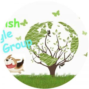 google_slides_group